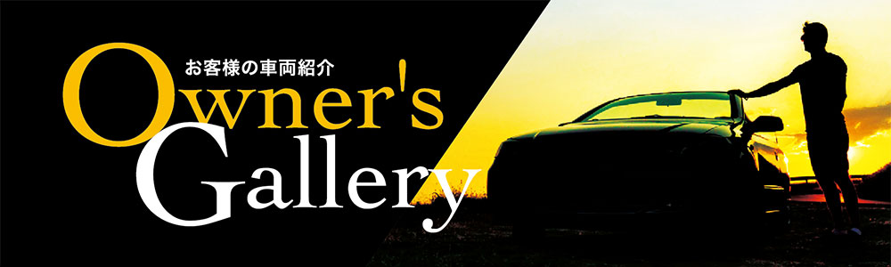 Owner's Gallery'