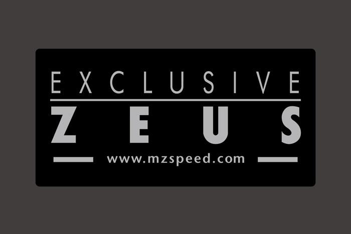 ZEUS Logo Plate